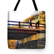Bastion Falls Bridge 1 Tote Bag