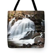 Bastion Falls In April Tote Bag