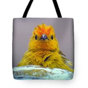 Bath Time Finch Tote Bag