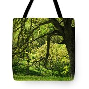 Bathed In Spring Tote Bag