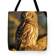 Bathed In Sunset Tote Bag