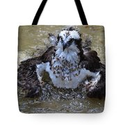 Bathing Osprey In Shallow Water Tote Bag