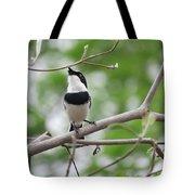 Batis Bird Tote Bag