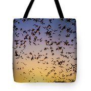 Bats At Bracken Cave Tote Bag