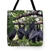 Bats Hanging Out Tote Bag