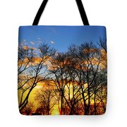 Battery Park Sunset Tote Bag