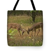 Battling Whitetails 0102 Tote Bag by Michael Peychich
