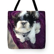 Baxter Boo Goes To The Beach Tote Bag