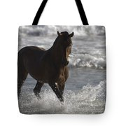 Bay Andalusian Stallion In The Surf Tote Bag