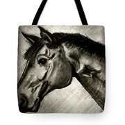 My Friend The Bay Horse Tote Bag