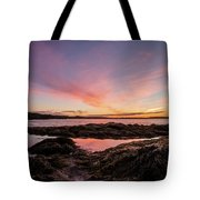 Bay Of Fundy Tote Bag