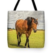 Bay Pony Tote Bag