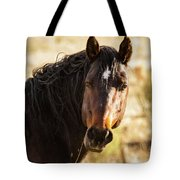 Bay Stallion Of Piceance Basin Tote Bag