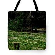 Bayou Lilly Tote Bag