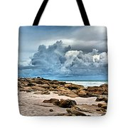 Beach At Washington Oaks Tote Bag