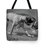 Beach Buddies Tote Bag by DigiArt Diaries by Vicky B Fuller