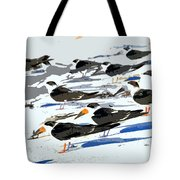 Beach Bums Tote Bag