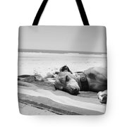 Beach Dreams Are Made Of These In Black And White Tote Bag