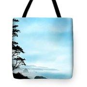 Beach Dreams On The Oregon Coast Tote Bag