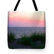 Beach Grass On Long Island Sound Tote Bag