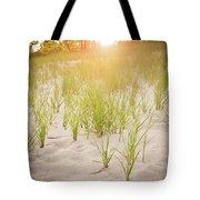 Beach Grasses Number 3 Tote Bag