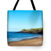 Beach In The Galapagos Tote Bag