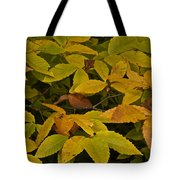 Beach Leaves Tote Bag