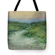 Beach Path At Dusk Tote Bag