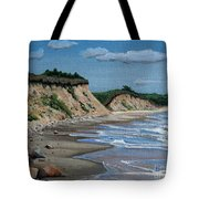 Beach Tote Bag by Paul Walsh