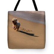 Beach Puppy Tote Bag