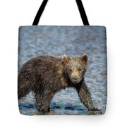 Beach Stroll Tote Bag