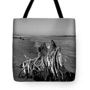 Beach Stump Tote Bag