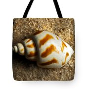 Beached Shell Tote Bag
