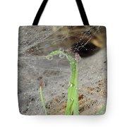 Beaded Web Tote Bag