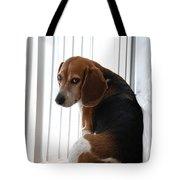 Beagle Attitude Tote Bag