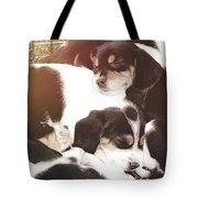 Beagle Pile Tote Bag