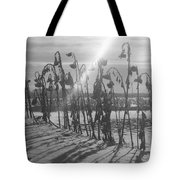 Beam Of Light Tote Bag