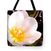Beaming With Life Tote Bag