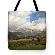 Bear Country Tote Bag