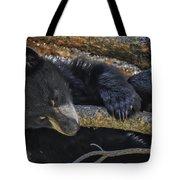 Bear Cub 2 Tote Bag