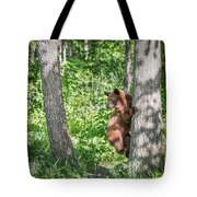 Bear Cub Climb Tote Bag
