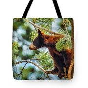 Bear Cub In A Tree 3 Tote Bag