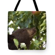 Bear Cub In Apple Tree4 Tote Bag