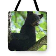 Bear Cub In Tree Tote Bag