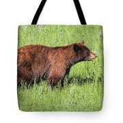 Bear Eating Daisies Tote Bag