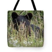 Bear In Tall Grass Tote Bag