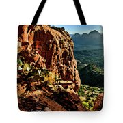 Bear Mountain 06-118 Tote Bag