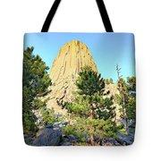 Bear Mountain Tote Bag