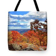 Bear Mountain Gold And Bronze Tote Bag