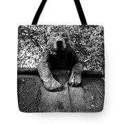 Bear On The Wall Tote Bag